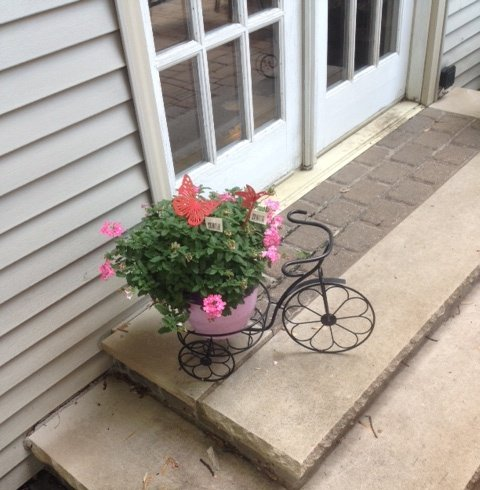Novelty Tricycle Planter
