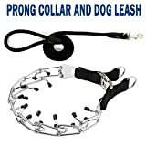 """Prong Collar and Dog Leash with Handle - Training Pinch Collar with Two Ring, Heavy Size (4 mm x 24"""") Prong Collar with Quick Release Snap Buckle and Rubber Caps Easy-On Training Adjus (XL)"""