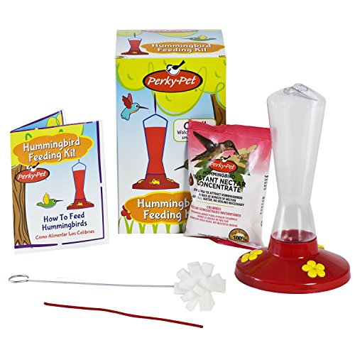 Perky-Pet 211PK Hummingbird Feeding Kit