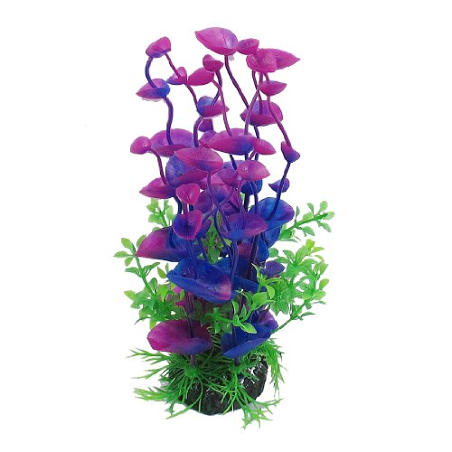 Spiffy pet products the ultimate guide to modern for Aquarium decoration online