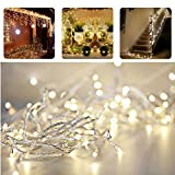 Indoor Outdoor String Lights with Tail Plug Extender, REDGO 33ft 100 LED String Lights Waterproof Christmas Lights with 8 Working Modes for Outdoor, Garden, Home, Christmas Party, Xmas Tree, Wedding Party - Warm White