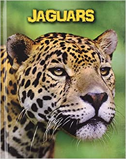 What Do Jaguars Eat >> Jaguars Living In The Wild Big Cats Charlotte Guillain