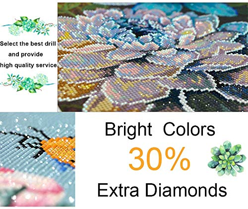 Diamond Painting Kit 16x16 Inch, DIY 5D Full Drill Diamond Painting by Number Kits for Adults, Rhinestone Embroidery Pictures Arts Craft for Home Wall Decor Gift Arts Craft (B)