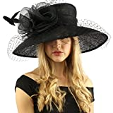 Elegant Dome Simamay Feathers Overlay Netted Derby Floppy 6'' Brim Dress Hat Black