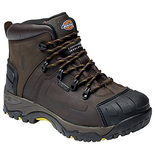 Dickies Dickies Brown Medway Boot Brown Medway Dickies Medway Boot vwm8n0N