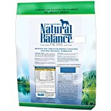 Natural Balance Vegetarian Formula Dry Dog Food, 28-Pound