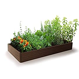 Raised Garden Bed - Outdoor Garden or Patio for Vegetable Flower - Rectangular Planter - Easy and Fast Assembly 14 ✔ Raised Garden Beds - easily build and yield a successful garden without breaking your budget. ✔ Simple Easy and Fast Assembling - Super easy assembly for a fast and easy garden set up so you can use all your time to the take care of your plants! ✔ Long lasting and Sturdy Frame - Top grade materials for a high a quality garden that will last for years and keep your plants growing.