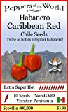 Caribbean Red Habanero 10 Chile Seeds Non-GMO