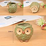 ROSE CREATE 3pcs 3in / 4in / 4.5in Owl Flower Pots