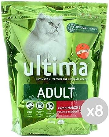 Última Juego de 8 Gato 201 – Ternera y arroz G Comida para Gatos ...