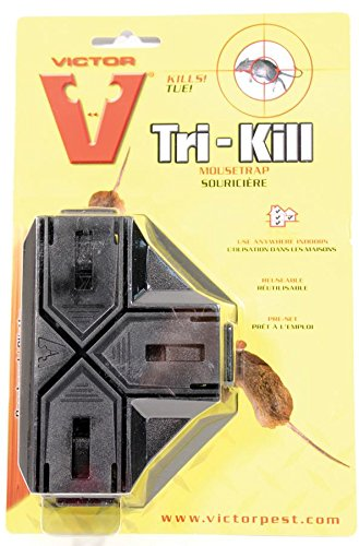 victor-tri-kill-mouse-trap-1-pack