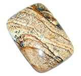 Natural Excellent Brown Picture Jasper 25.5ct Loose Stone from SilverRush Style