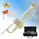 Best Trumpets - Libretto Trumpet Bb Lacquer Rose Brass, Great Review