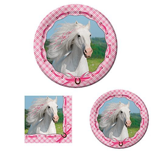 Heart My Horse Birthday Party Supplies Set for 16: Dinner Plates, Dessert Plates, and -