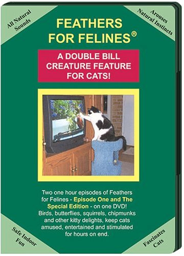 (Feathers For Felines Double Bill Creature Feature DVD: Episode 1 & Special Edition videos/cat toys for cats)