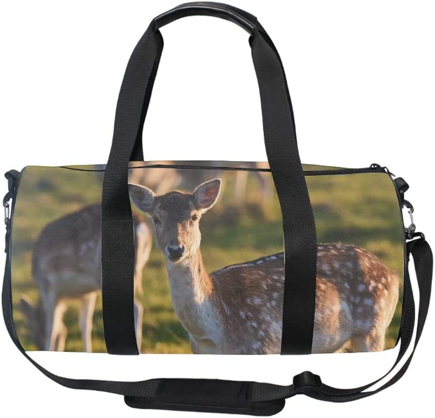 Medium Gym Bag with Shoe Compartment Men Duffel Bag Brown Deer