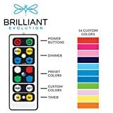 Brilliant Evolution Wireless Color Changing LED