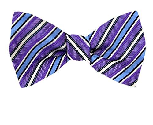 FBTT-11137 - Purple - Blue - Mens Big and Tall Silk Self Tie Bow Tie