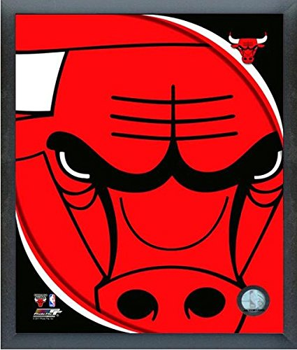 Bulls Chicago Team Poster - Chicago Bulls NBA Team Logo Photo (Size: 12