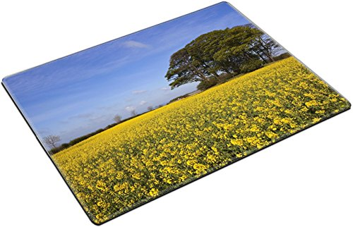 MSD Place Mat Non-Slip Natural Rubber Desk Pads design 20017214 a grove of trees growing on an ancient prehistoric burial mound surrounded by golden canola flowers under a hazy blue spr (Flower 1 Tree Mound 2)