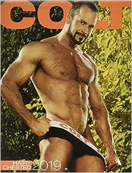 Hairy Chested Men 2019 Calendar por Colt Studio Group epub