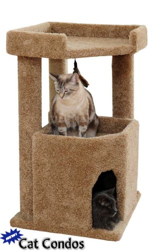 Corner Roost Cat Condo Color: Brown, My Pet Supplies