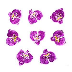 HZOnline Artificial Silk Phalaenopsis Flower Heads, Fake Butterfly Orchid Head Floral Bouquet for Crafts Wedding Decoration DIY Making Bridal Hair Clip Headbands Photography Props 2