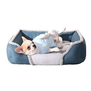 anbiwangluo Lujo Casa para Mascotas Perros Cama con Desmontable Amortiguar S/M/L/XL (L, Azul): Amazon.es: Productos para mascotas