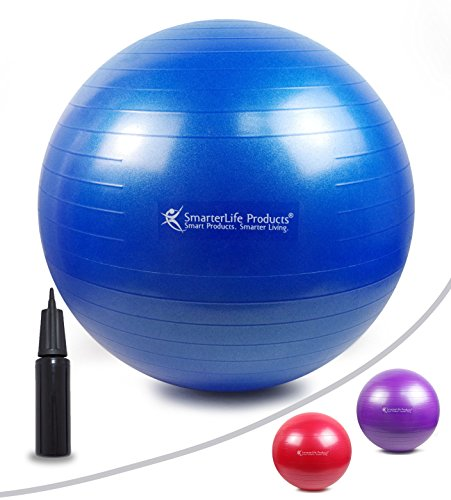 EXERCISE BALL Anti Burst Non Slip Stability