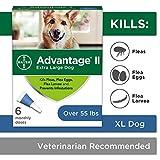 Flea and Lice Treatment for Dogs, Over 55 lb, 6 doses, Advantage II