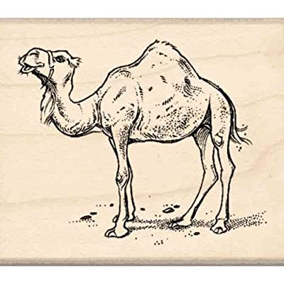 Stamps by Impression Camel Rubber Stamp: Arts, Crafts & Sewing