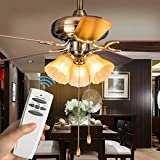 Ceiling Fan Remote Control Replace Hampton Bay