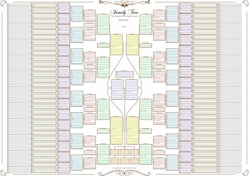 Family tree chart - 10 Generation Double Chart (coloured boxes 120 g paper)
