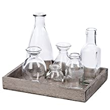 Skalny Rectangle Wood Tray with 6 Glass Bottles, 9.5 by 7 by 1.25-Inch