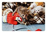Ambesonne Cats Pet Mat for Food and Water, Kittens and Mittens Newborns Baby Animals in an Plain Blanket Wood Play Toys Adorable, Rectangle Non-Slip Rubber Mat for Dogs and Cats, Multicolor