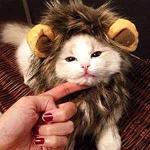 Lion Mane / Santa Costume Hat / Denim Jacket Hat Super Cute Costumes for Small Dogs and Cats & Amazon.com : Lion Mane for Small Dog Cat Costumes for Pets Cute Lion ...