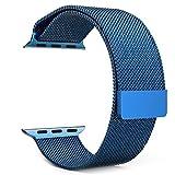 Jasinber Milanese Loop Correa de Acero Inoxidable Reemplazo de Banda de la Muñeca con Cerradura Magnética para 42mm Apple Watch Series 1/2/3 y Series 4 (44mm) (Azul)