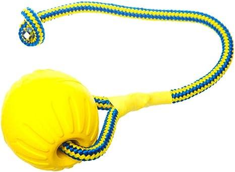 A-Waroom - Juguete de Cuerda para Perro, Indestructible, de Goma ...