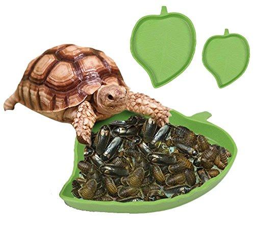 STTQYB 2 Pack Leaf Reptile Food and Water Bowl for Pet Aquarium Ornament Terrarium Dish Plate Lizards Tortoises or Small Reptiles (Tortoise Supply)