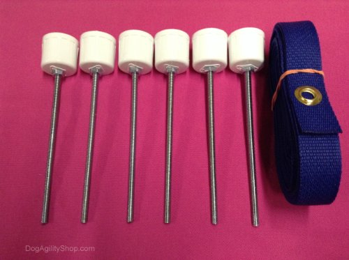 Weave Poles - 6 Weave Pole Spikes/Stakes and Blue pole placer combo