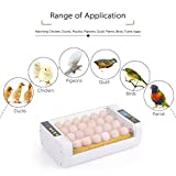 Decdeal Intelligent Egg Incubator 24-Eggs Poultry
