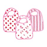 Aden and Anais Snap Bibs - Princess Posie