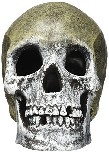 Exotic Environments Human Skull Aquarium Ornament, 5-Inch by 7-1/2-Inch by 6-Inch