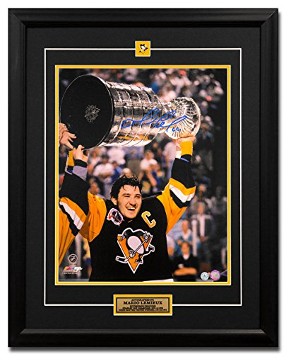 AJ Sports World Mario Lemieux Pittsburgh Penguins Autographed 1991 Stanley Cup 25x31 Frame