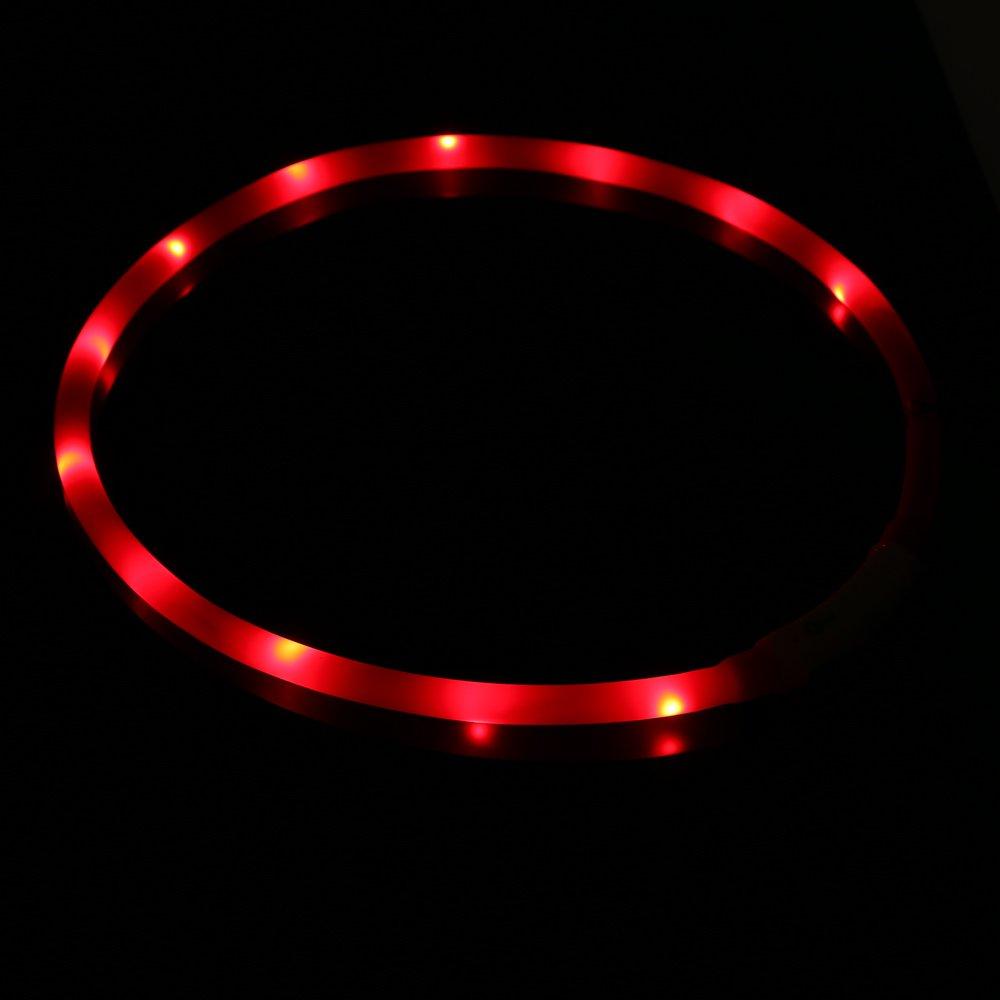 ZOGIN Collar de perro LED, collar de seguridad recargable USB para perro gato y otro animal doméstico, color rojo