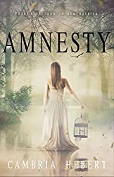 Amnesty: Amnesia Duet Book 2