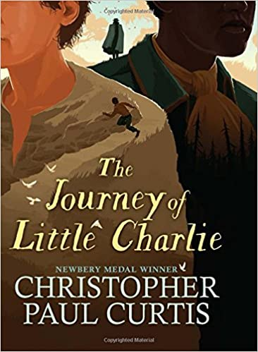Image result for journey of little charlie amazon