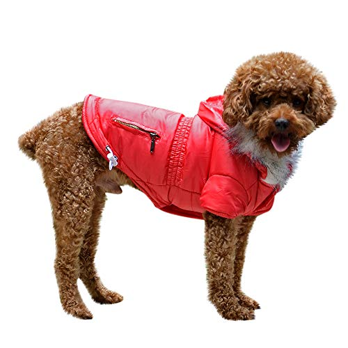 (Geetobby Pet Dog Winter Warm Jacket Cat Puppy Hoodies Costume Coat Apparel)