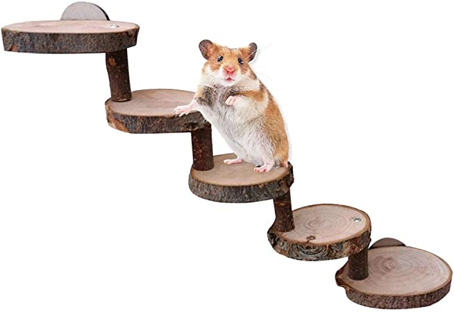Escalera de hámster de madera para jaula Escalera de hámster muro de escalada escalera de roedor juguete rampa de madera escalera escaleras puente accesorios para jaula de animales pequeños, hámster: Amazon.es: Hogar