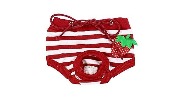 Amazon.com : eDealMax rayada Ajustable del perro casero de la Cintura del pañal Pantalones ropa Interior, pequeño, Rojo/Blanco : Pet Supplies